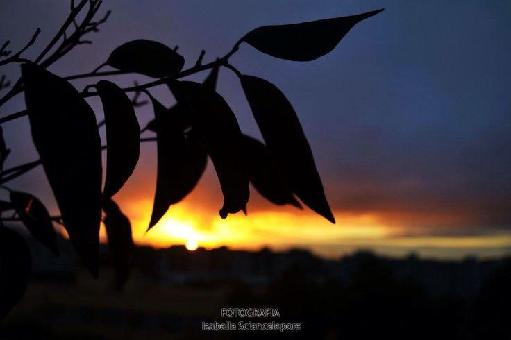 Sai cosa c'è di bello? Basta guardare fuori dal tuo balcone!  #photobyme
