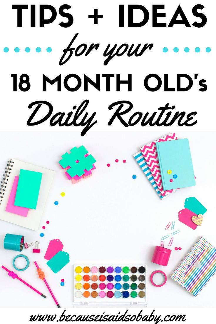 Routines are SO essential for toddlers! Click to find out what your toddler's daily routine should look like. This is a must-read for stay-at-home-moms!