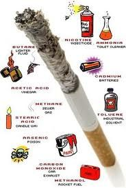 the dangerous effects of cigarette smoking in the human body As it is clear from the above points the effects of cigarettes (smoking) on human  health are critical and in several cases, deadly therefore it is a very important.