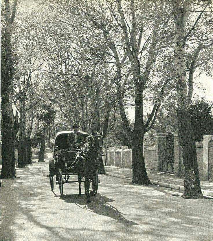 1930 ~ Kifissia, Athens