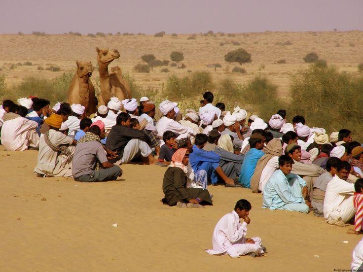 India: The Rajasthan Desert Festival: http://www.worldwanderingkiwi.com/2012/05/india-rajasthan-desert-festival/
