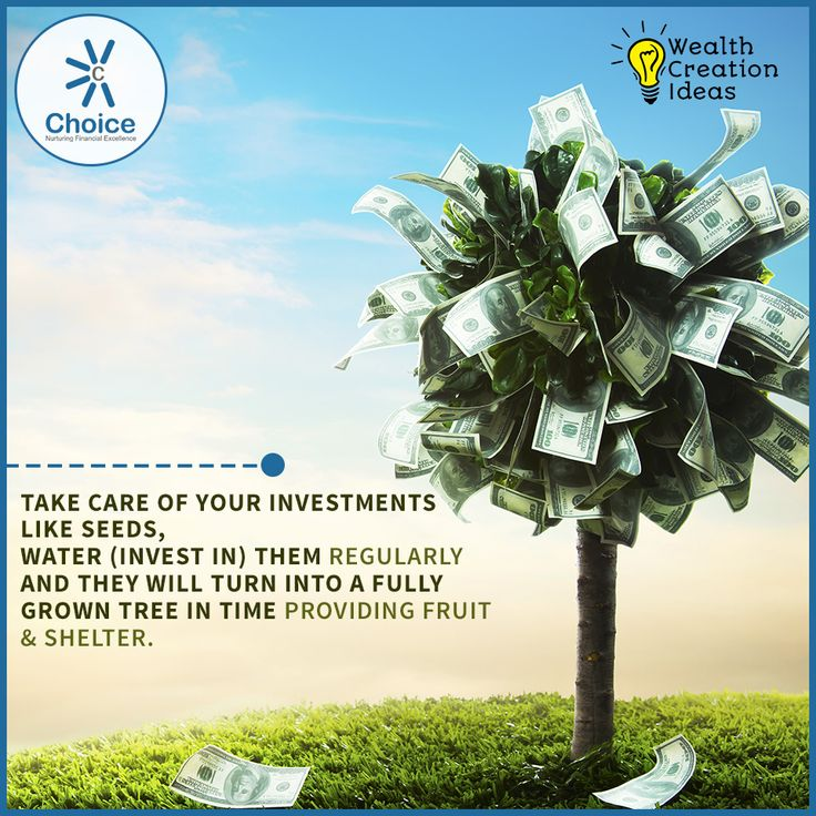 #ChoiceBroking #WealthCreationIdeas : Take care of your investments like seeds, water (Invest in) them regularly and they will turn into a fully grown tree in time providing fruit & shelter.
