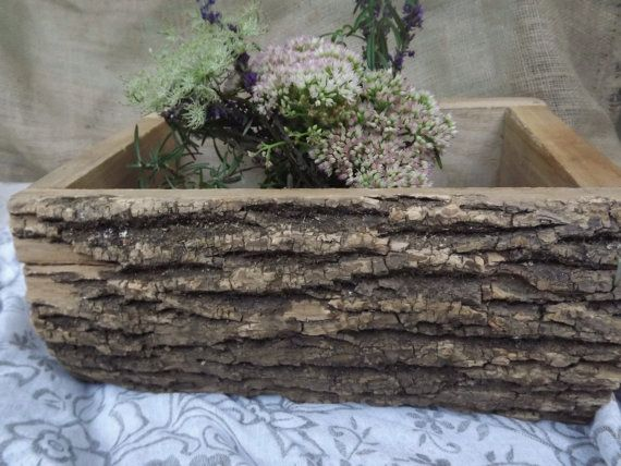 Garden To Table Rustic Tree Bark Planter By