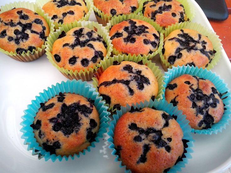 borůvkové muffinky