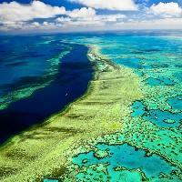La grande barriera corallina le foto più belle
