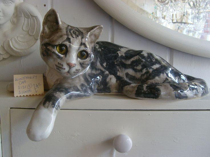 Beautiful grey tortoiseshell cat Size 5 £45!