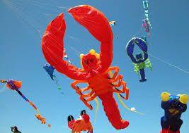 fuerteventura kite festival 2014