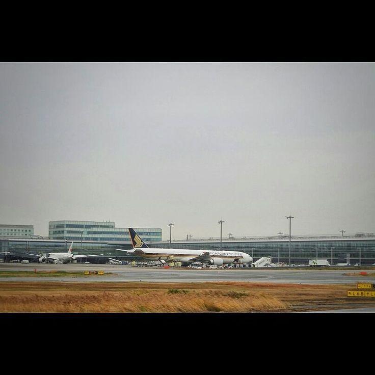 少し期待しましたがB7でした at Tokyo Haneda airport There's not A350. :( #aviation #airport #haneda #sq #singaporeairlines #羽田空港 #シンガポール航空 #a350はいなかった #b777