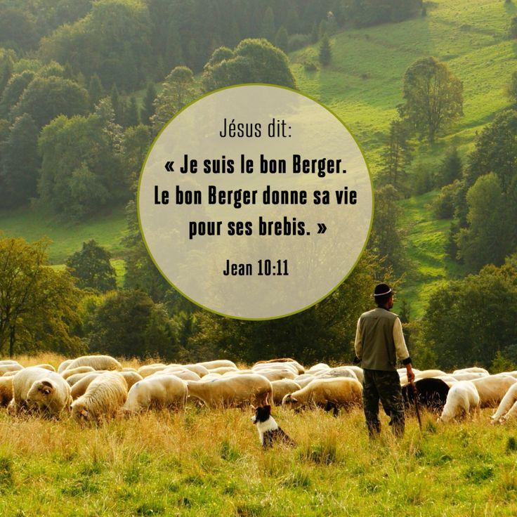 Jean 10:11                                                                                                                                                                                 Plus