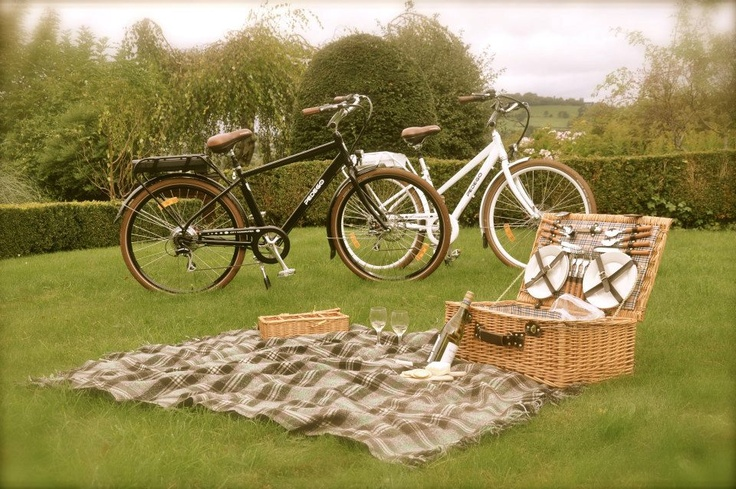 The perfect date idea: a Pedego picnic!  #daydate #electricbike