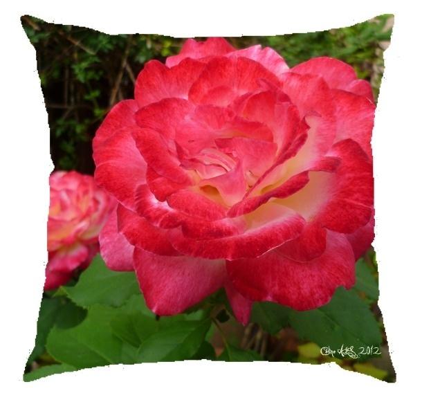 "Coussin "" Rose tendresse "" 40x40cm"