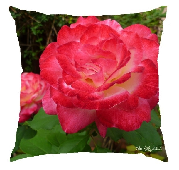 "Coussin "" Rose tendresse "" 40x40cm"