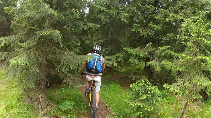 Aventuri pe bicicleta: Prin Muntii Apuseni pe traseul Padis - Glavoi - S...
