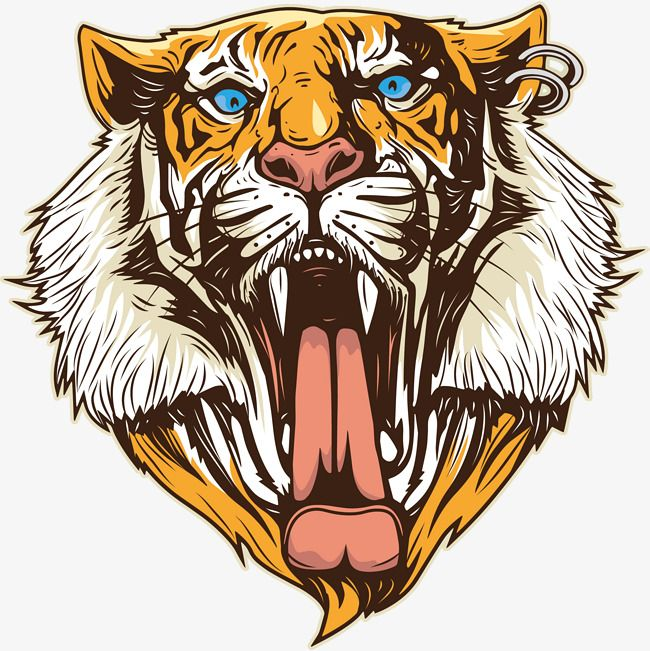 Open The Mouth Of The Tiger Vector Material Tiger Tiger Head Png And Vector Hewan