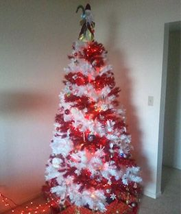 Candy Cane Christmas Trees Online | Treetopia COULD BE AN ALABAMA-ROLL TIDE tree!