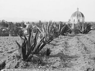 """Vista de la parte posterior del Santuario del Señor del Santo Sepulcro o """"Señor de la Cuevita"""", en Iztapalapa, alrededor de 1880. Aún no cuenta con la torre del campanario del lado izquierdo, que fue levantada en 1907; la de la derecha la tapa la cúpula. Más a la izquierda, a lo lejos, se alcanza a ver la iglesia de San Lucas, en el centro de Iztapalapa."""