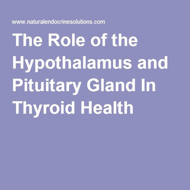 The Role of the Hypothalamus and Pituitary Gland In Thyroid Health
