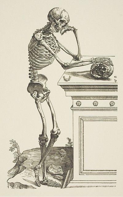 Andreas Vesalius (1514–1564), Skeleton Contemplating a Skull from De Humani Corporis Fabrica, 1543.