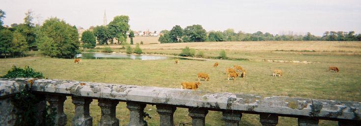 Afin d'illustrer le travail de Paul-Bernard de Lavenne, comte de Choulot, créateur de jardins du XIXe siècle, nous avons choisi les potagers des trois parcs où il est intervenu en Vendée: en 1857, au parc de la Bénatonnière, commune de Grosbreuil, pour le comte de Bessay; entre 1858 et 1863, au château du Puy-de-Sèvre, commune de Treize-Vents, pour le comte de Rivière; en 1864, au parc de la Gaudinière, commune de Saint-Vincent-sur-Craon, pour le marquis de Surineau.
