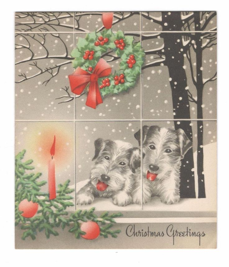Vintage Christmas Greeting Card 2 Terrier Dogs Looking Out Window, Wreath 1940's