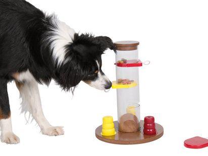 #juguete activity para estimular el ingenio de tu #perro Disponible :http://www.tiendaonlineparaanimales.com/tienda-online-para-mascotas/tienda-online-para-perros/juguetes-para-perro/dog-activity-push-away-25x7x17-cm-niv-2.html