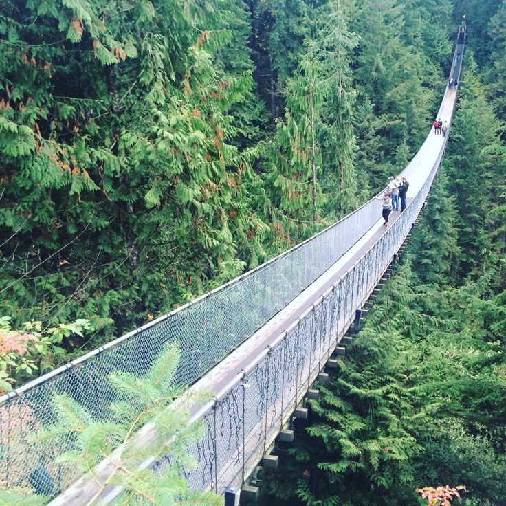 The Longest suspension bridge in the world at Capilano - Vancouver