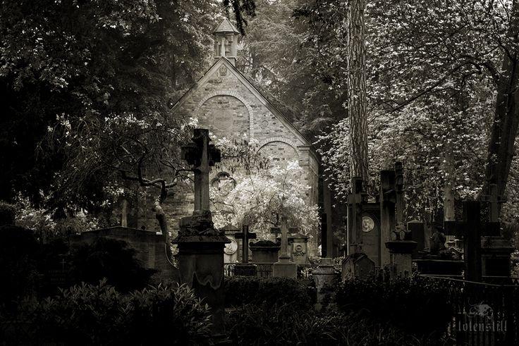 Cemetery, Cimitero, Friedhof, Bonn