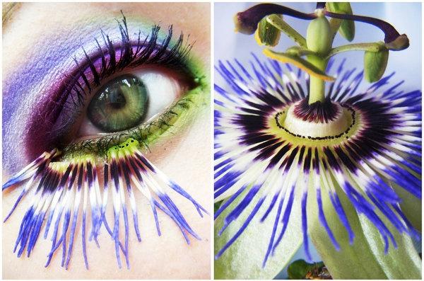 сумасшедший, глаз, глаза, цветок, зеленый