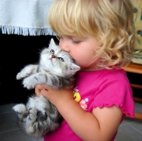 A child and a kitten: Kiss, Little Girls, Kitty Cat, So Cute, Pet, Tiny Human, So Sweet, Kid, Animal