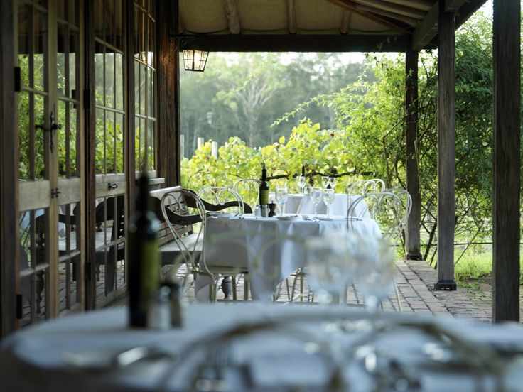 Lunch in the vineyards at Tower Lodge, Hunter Valley