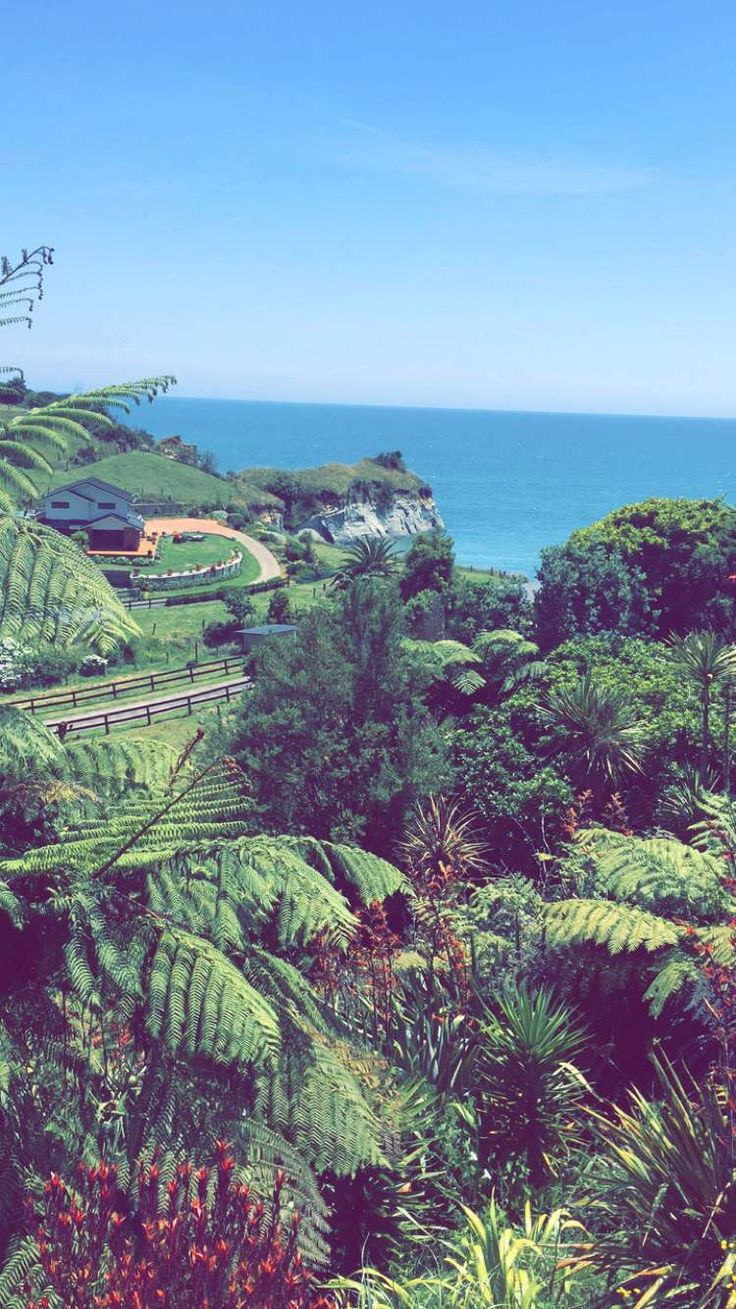 New Plymouth 😍