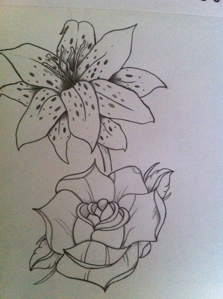 Rose and lily :) | Drawing | Tattoos, Leaf tattoos, Piercings