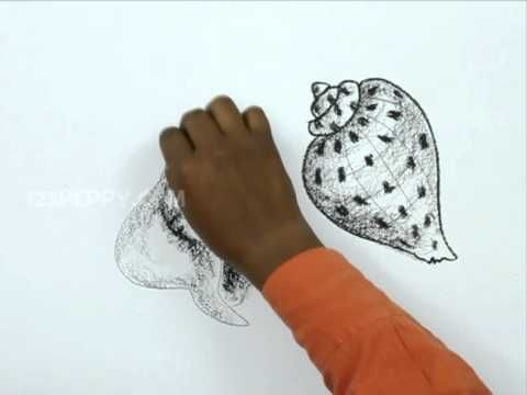 Pen and Ink Drawing Tutorials | How to draw sea shells - YouTube