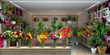 https://www.flowerwyz.com/flower-shops-online-flower-stores.htm  Click Here For Flower Shops Near Me,  Flower Shops Near Me,Flower Shop,Flower Shop Near Me,Flower Shops,Flowers Near Me