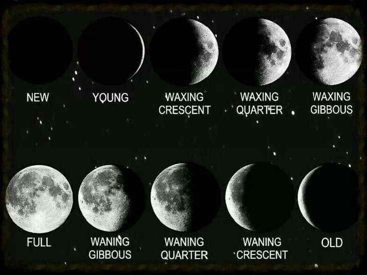 11 Best Earth Medicine Calendar Images On Pinterest Moon