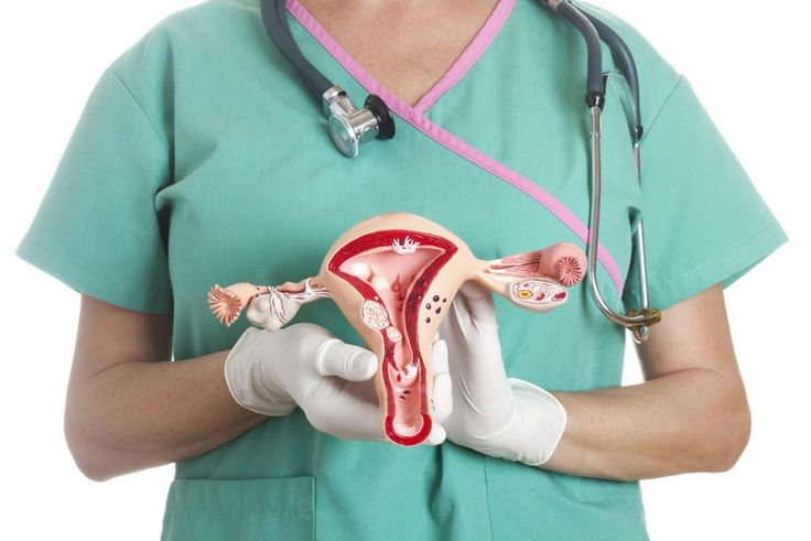 A case-control study of 1,510 women found that the risk of endometrial cancer was 22 percent higher in those with higher levels of cadmium.