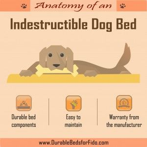 Anatomy of an Indestructible Dog Bed Infographic