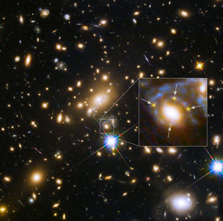 Astronomers using NASA's Hubble Space Telescope have spotted for the first time a distant supernova split into four images.  (Attraverso l'effetto di una lente gravitazionale,  per la prima volta sono riusciti a catturare la lontana  immagine dell'esplosione di una supernova, che forma la famosa croce di Einstein, cioè un'immagine multipla causata dalla curvatura dello spazio-tempo dovuto alla grande galassia ellittica che ha davanti e all'ammasso di galassie in cui è situata.)