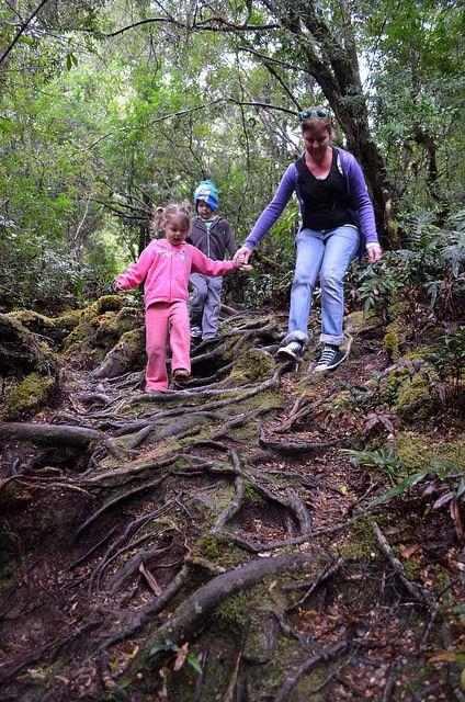 Fall in love with Corinna, and bring the family!  #corinna #tarkine #tasmania #discovertasmania Image Credit: Neil Fahey