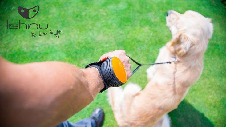 Handsfree Leine für Hundehalter