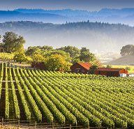 one of the Top 25 experiences in California-Visiting California's Wine Country