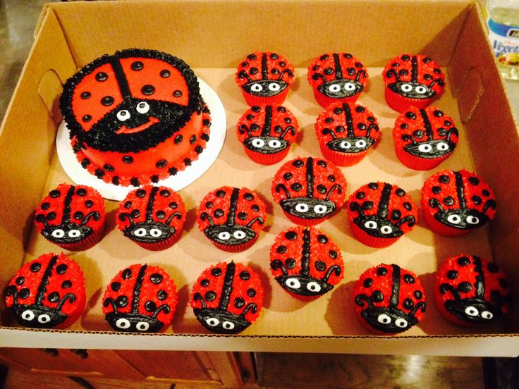 Ladybug smash cake and cupcakes