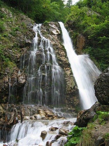 Cascada Urlatoarea este o cascadă formată de pârâul Urlătoarea, în apropierea orașului Bușteni, România, aflată la altitudinea de 1100m, în apropierea traseului turistic care duce din Bușteni spre Platoul Bucegi pe Valea Jepilor. Se poate ajunge și din localitatea Poiana Țapului.