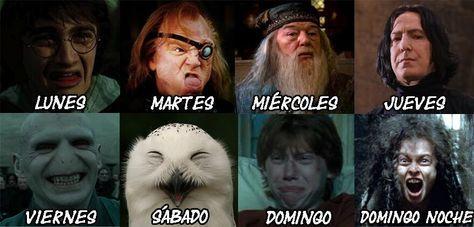 La cara que tenemos según el día de la semana Harry Potter
