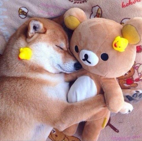 「もう、眠るの......」 「おもちゃ箱に帰ろっかな.....」