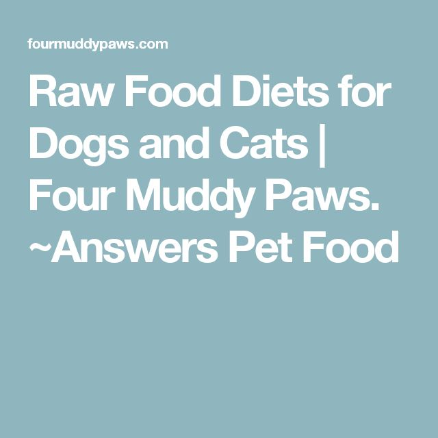 Raw Food Diets for Dogs and Cats | Four Muddy Paws. ~Answers Pet Food