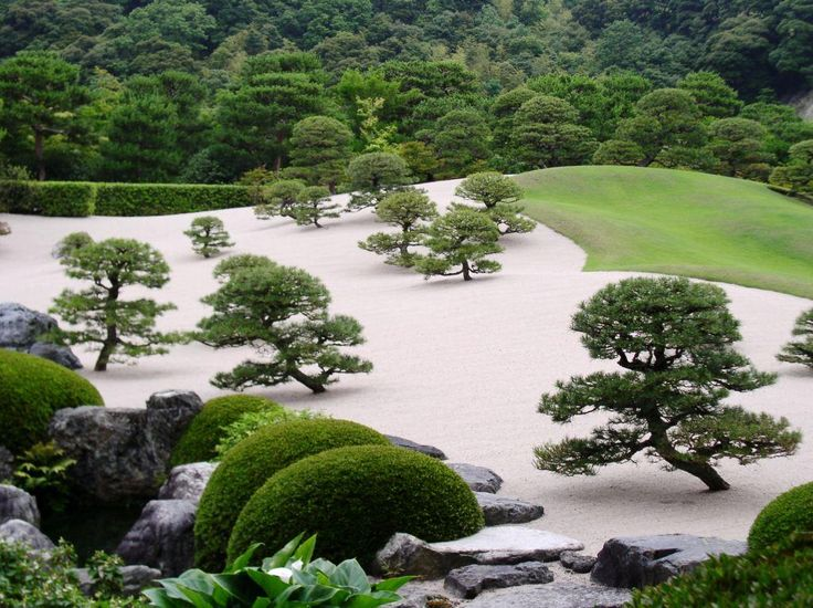 93 best images about topiary on pinterest gardens for Zen garden trees