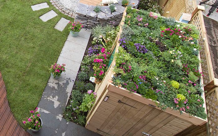 Love your garden episode 4 five things we learned and how for Garden outlay ideas