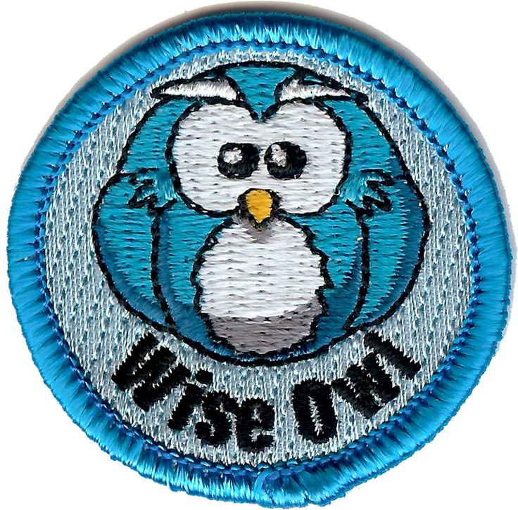 BadgeFreaks - Wise.Owl, £1.25 (http://badgefreaks.com/wise-owl-1/)