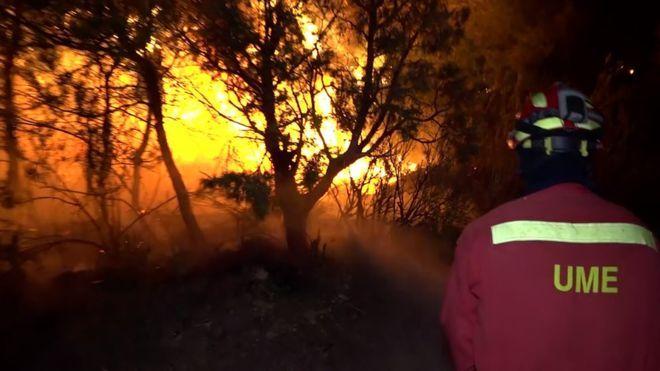 يحارب المئات من رجال الإطفاء حرائق الغابات في منطقة كاتالونيا الإسبانية حيث ترتفع درجات الحرارة إلى 40 درجة مئوية 104 Extreme Weather Events Europe Heatwave